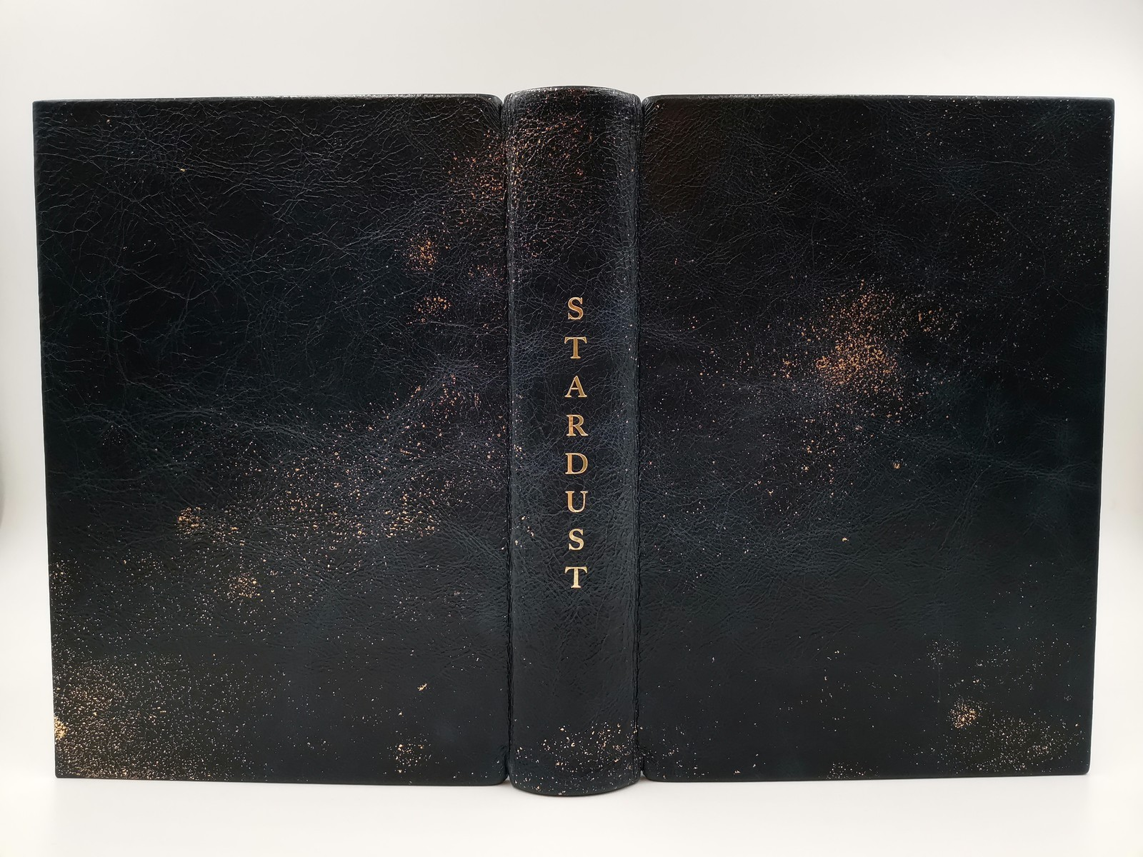 stardust-leather-1